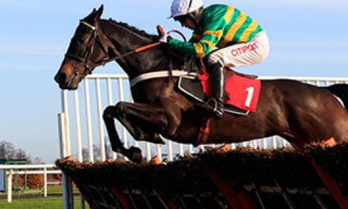 Everything you need to know about the Unibet Champion Hurdle Challenge Trophy