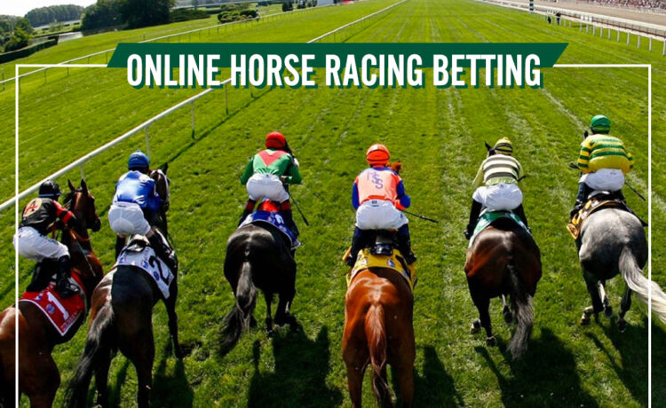 Online horse race betting uk east anglian greyhound derby betting online