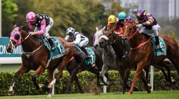 Horse Racing Tips – How to understand form